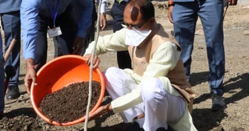 मुख्यमंत्री श्री शिवराज सिंह चौहान ने आज श्यामला हिल्स स्थित स्मार्ट सिटी पार्क में स्व.श्री नंदकुमार सिंह चौहान की स्मृति में पौधा रोपा।