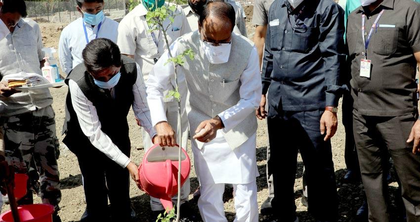 मुख्यमंत्री श्री शिवराज सिंह चौहान ने श्यामला हिल्स स्थित स्मार्ट सिटी पार्क में शीशम का पौधा रोपा।