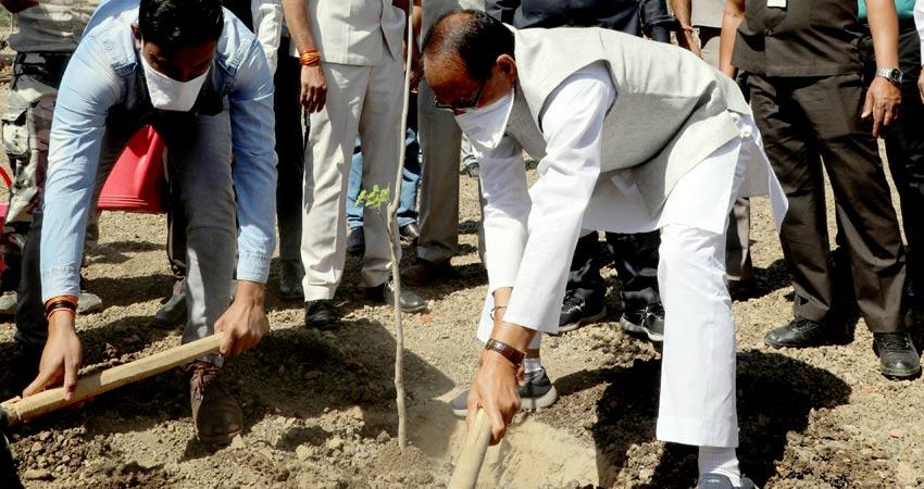 मुख्यमंत्री श्री शिवराज सिंह चौहान ने श्यामला हिल्स स्थित स्मार्ट सिटी पार्क में पौधरोपण के साथ श्रम दान भी किया।
