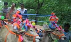 राज्यपाल श्रीमती आनंदीबेन पटेल ने खरगोन के आस्था ग्राम द्वारा विकसित ज ...