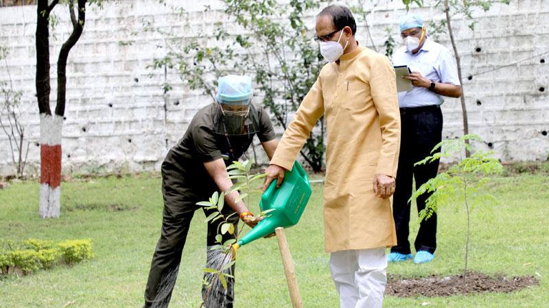 मुख्यमंत्री श्री शिवराज सिंह चौहान ने निवास पर अमरूद का पौधा रोपा।