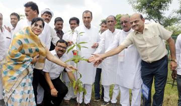 ऊर्जा मंत्री श्री प्रियव्रत सिंह ने जबलपुर जिलें के ग्राम लम्हेता में पौध-रोपण किया।