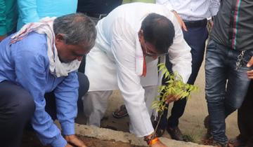 जनसम्पर्क मंत्री श्री पी.सी. शर्मा ने सीहोर जिले के डोबी ग्राम में पौधा-रोपण किया और ग्रामीणों से पौधे लगाने एवं उनके संरक्षण की अपील की।